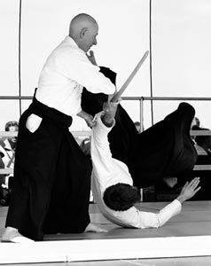 specialkeiko 2 x Master Classes on Nikyo and Irimi nage November 21. and 22. – 2015 Instructor: Ethan Monnot Weisgard, 6th Dan Aikikai