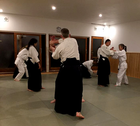 Copenhagen Aiki Shuren Dojo Training Schedule for Fall & Winter 2018-2019