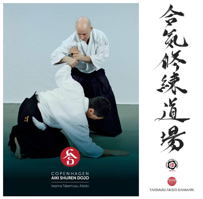 Aikido seminars 2019: Ethan Weisgard Sensei 6th Dan Aikikai March 16 and 17, 2019 BUKIWAZA SEMINAR June 17th -21st SOTO DESHI WEEK November 16th and 17th TAI JUTSU SEMINAR The seminars are open to all aikido practitioners regardless of style!